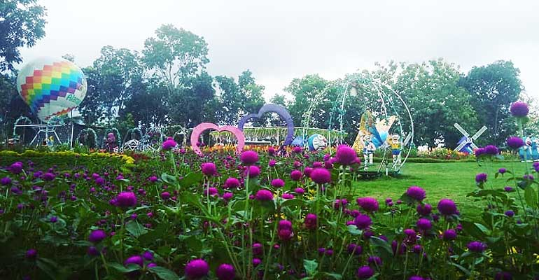 Taman Bunga Alamanda Satu Lagi Taman Bunga Instagramable Di Jogja Jogja Yogyakarta Istimewa